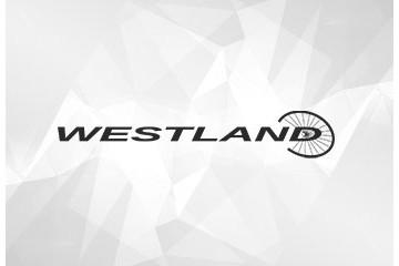 Westland Nostalgie 3 Gang 28 Zoll Damenfahrrad 3 Gang Nabenschaltung